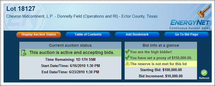 Display auction status
