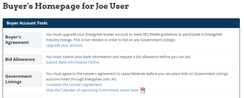 Image showing a Buyers bid allowance on their Buyers Homepage